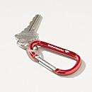 Bank of America Carabiner Key Chain
